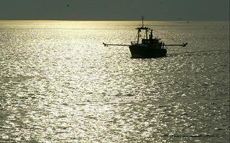 EU MAG 欧州の漁業政策