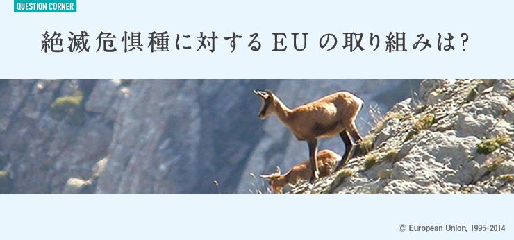 絶滅危惧種に対するEUの取り組みは?