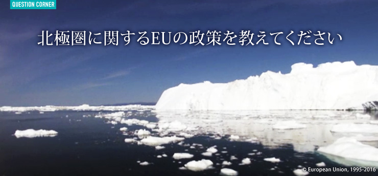 北極圏に関するEUの政策を教えてください